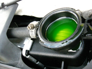 antifreeze in cooling system