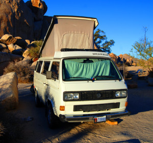 vw-in-joshua-tree